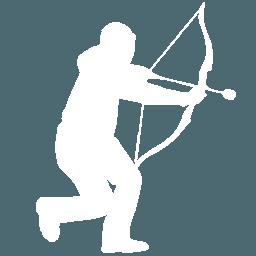 archery tag icoon